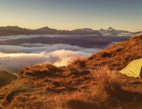 L'écotourisme et le camping