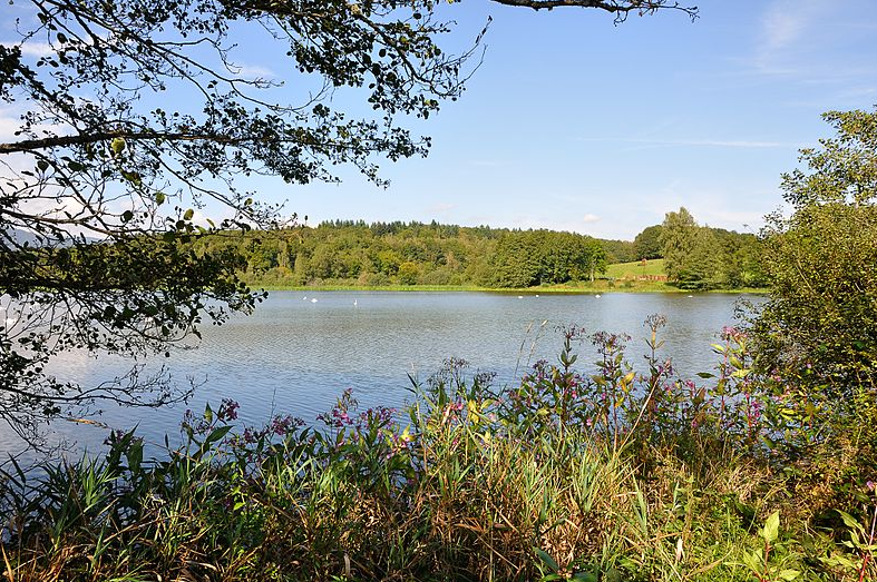 camping Territoire-de-Belfort