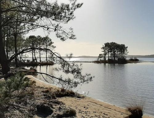 TOP 5 des meilleures plages, étangs et lacs où se baigner en Aquitaine